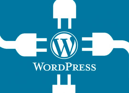 wordpress_560x560
